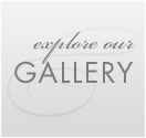 Explore our Gallery